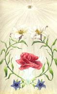 Růže a lilie